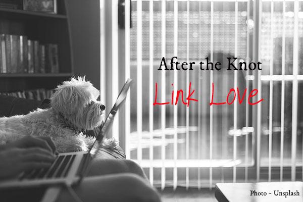 afterh-the-knot-link-love
